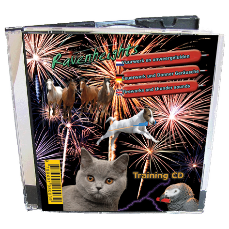 fireworks cd cheapest